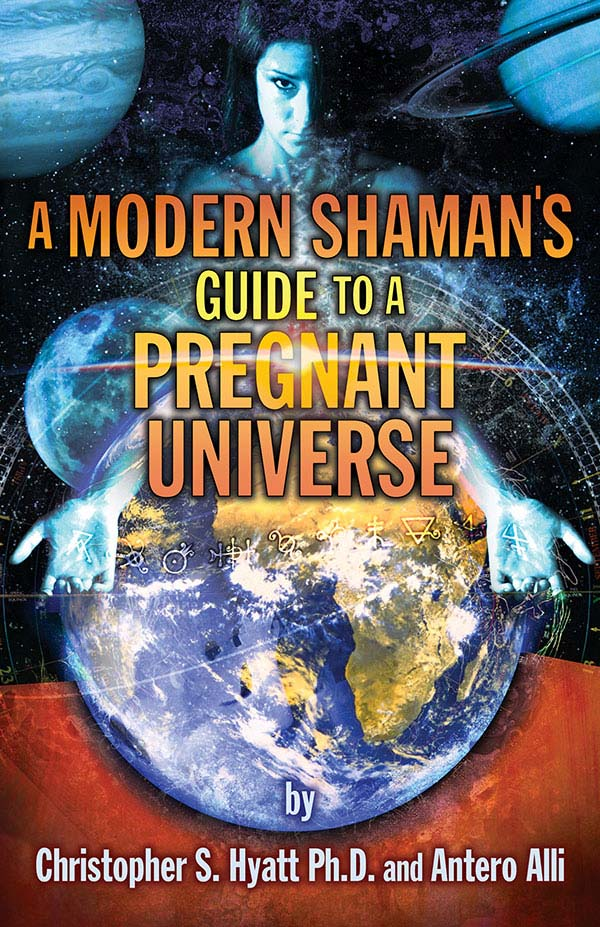 A Modern Shamans Guide to a Pregnant Universe